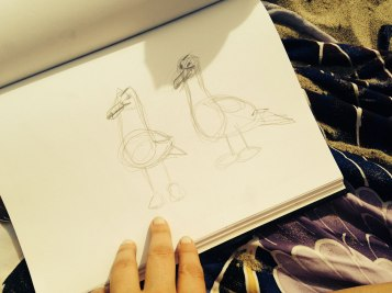 Sketching sea birds