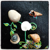 Collection of small shells