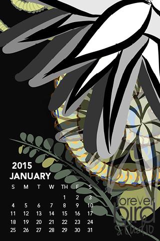 320x480 iPhone3 January 2015 Calendar