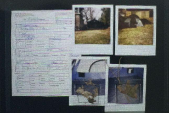 Backyard_archeology_MitraCline