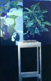 living_paintings_MitraCline2