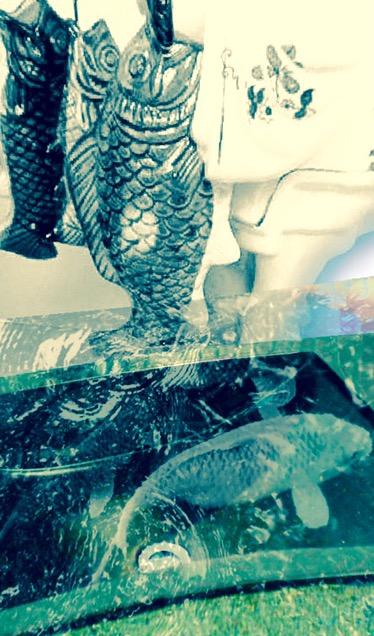 fish in sink dream image