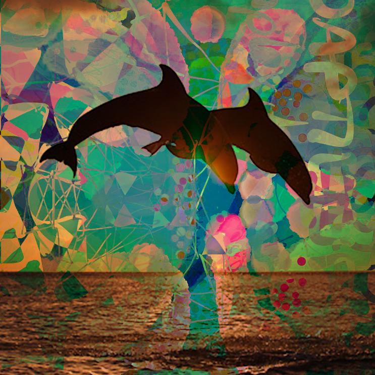 dolphin_jump