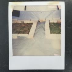 polaroid of inside tent