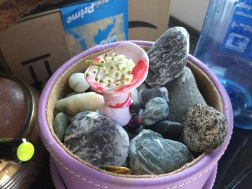 rocks and flowers still life