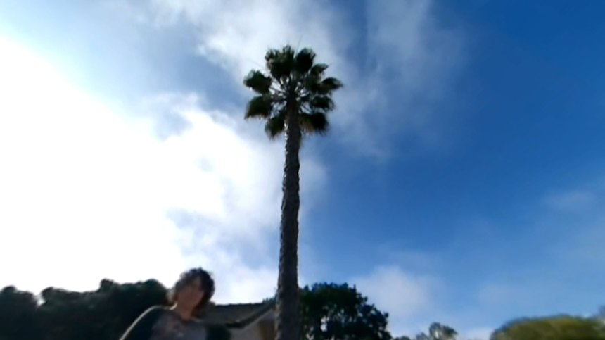 360 video looking up